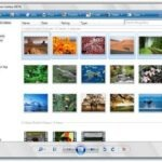 How to Organize Old Photos and Convert them to Digital